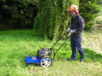 Best-walk-behind-grass-trimmer